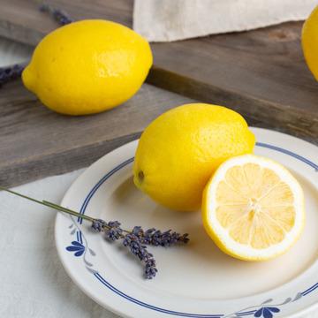 Lemon Snow Cone Syrup (Sugar Free, Powdered)