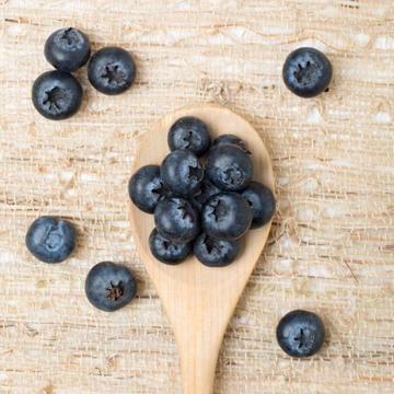 Blueberry Syrup, Organic