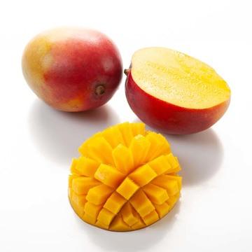 Organic Mango Daiquiri Bar Mix Syrup