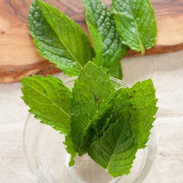 Spearmint Snow Cone Syrup
