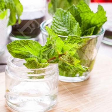 Organic Mojito Bar Mix Syrup