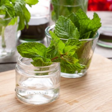 Peppermint Syrup (Sugar Free, Powdered)