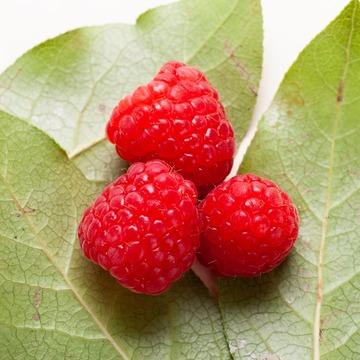 Organic Raspberry Coffee Syrup