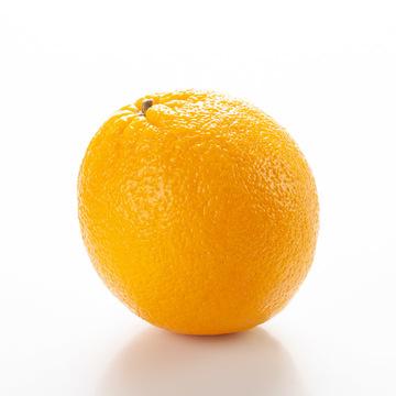 Orange Syrup (Sugar Free, Powdered)