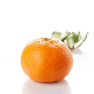 Mandarin Orange Snow Cone Syrup