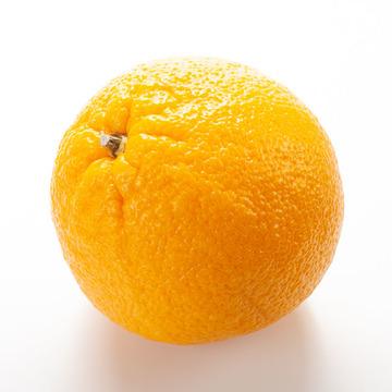 Orange Snow Cone Syrup (Sugar Free, Powdered)