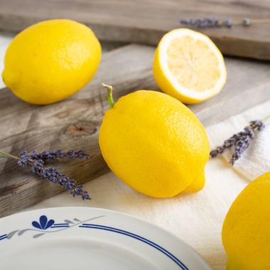 Lemon Syrup (Sugar Free, Powdered)
