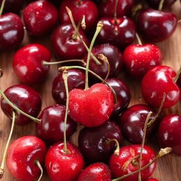 Black Cherry Syrup, Organic