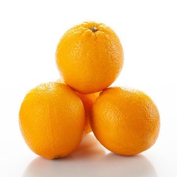 Orange Syrup, Organic