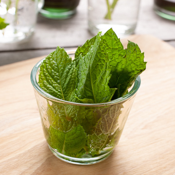 Organic Mint Snow Cone Syrup