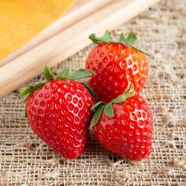 Strawberry Italian Soda Syrup (Sugar Free, Powdered)