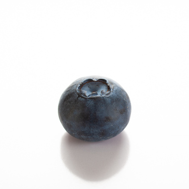 Blueberry Italian Soda Syrup (Sugar Free, Powdered)