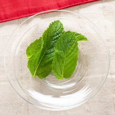 Spearmint Coffee Syrup
